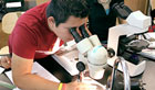A photo of a student looking through a microscope