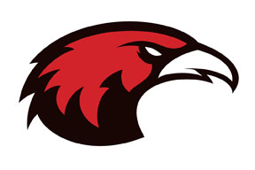 Red Hawk Face